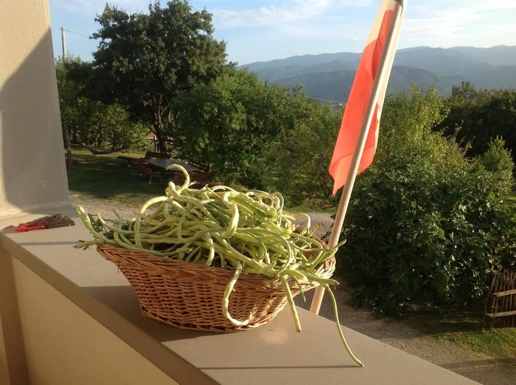 Farmhouse accommodation Arezzo